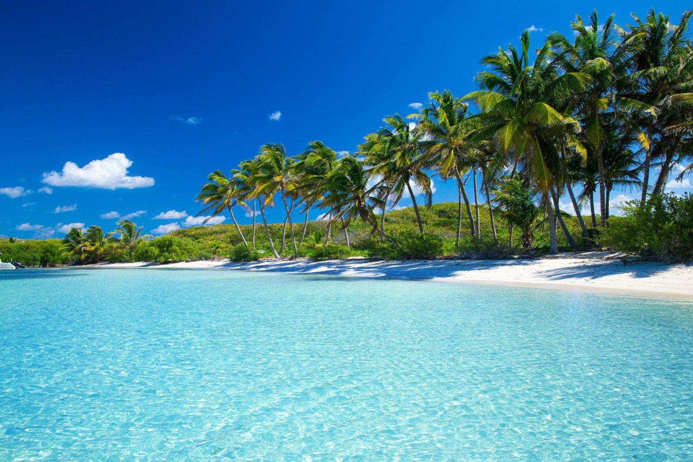 Estudiar francés en el caribe